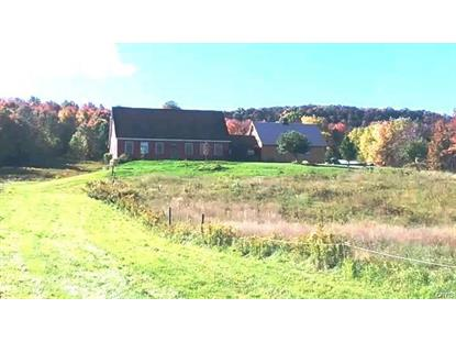 1458 South State Route 392 Rd Highway South Virgil, NY MLS# S1196259