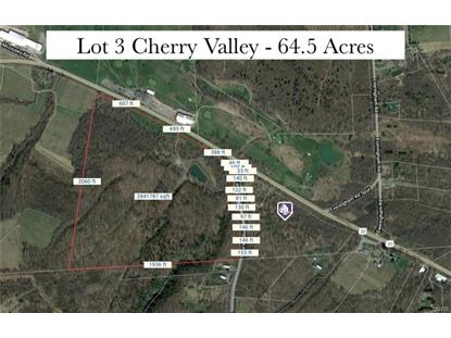Lot 3 Cherry Valley Turnpike  La Fayette, NY MLS# S1265631