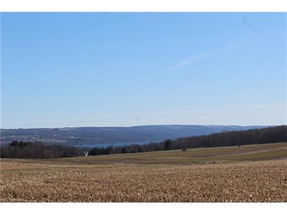 1155 Hencoop Road Skaneateles, NY MLS# S1266363