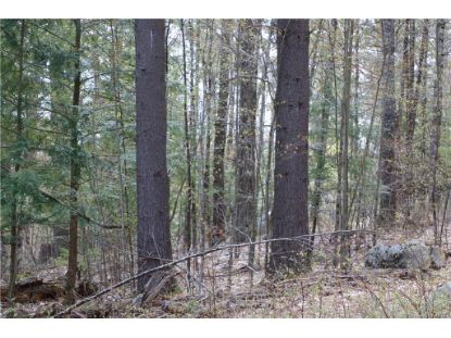 00 Hutchins Swamp Lane Lewis, NY MLS# S1285271