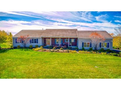 8910 Peck Hill Road Manlius, NY MLS# S1299765