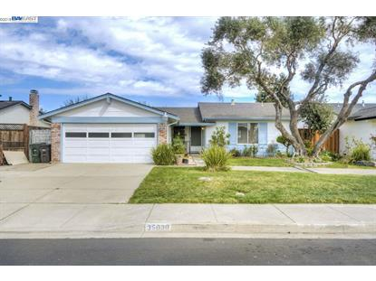 35030 Clover St, Union City, CA