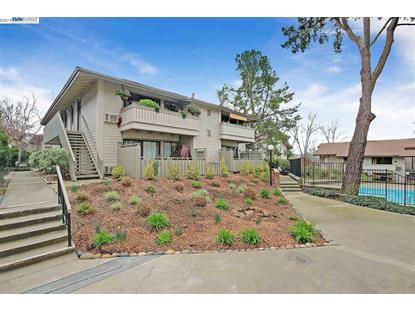 1437 Marchbanks Dr. Walnut Creek, CA MLS# 40853394