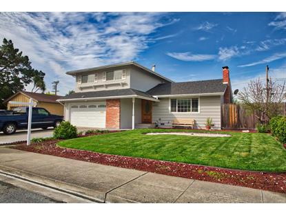48331 Conifer Street, Fremont, CA