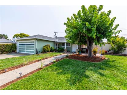 507 Sterling View Avenue, Belmont, CA