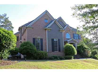 3530 Falls Branch Court, Buford, GA
