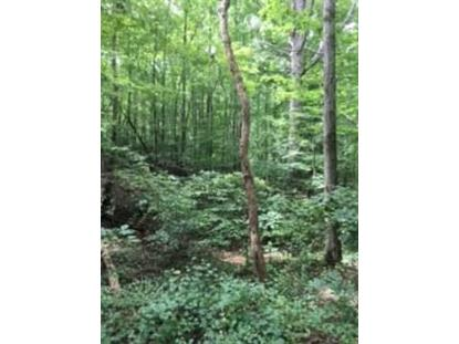 0 Chestatee View Dr. +/- 3.86 acres  Dawson, GA MLS# 6069179