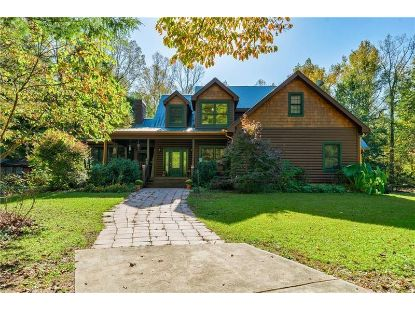 142 Creekview Drive Ellijay, GA MLS# 6797182