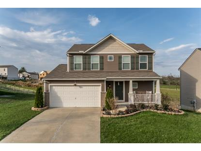 3022 Silverbell Way, Independence, KY