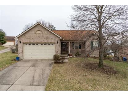 10201 Falcon Ridge Drive Independence, KY MLS# 521819