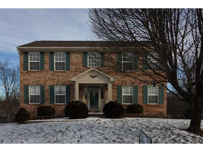 10709 Blue Spruce Independence, KY MLS# 522422