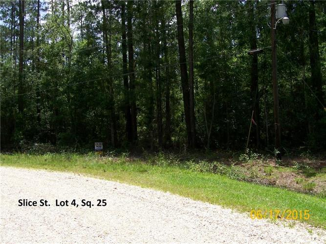 SLICE LOT 4 SQ 25 Street, Abita Springs, LA 70420 - Image 1