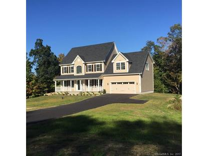 113 Meshomasic Trail, Portland, CT