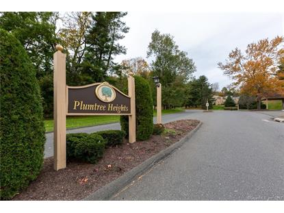 8 Natureview Trail Bethel, CT MLS# 170139582