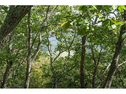0 Cart Road Dover Plains, NY MLS# 170180963