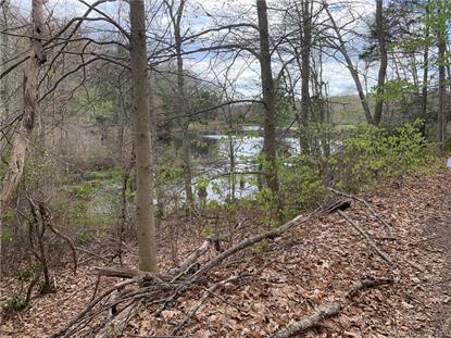 LOT 7 Sheepskin Hollow Road South East Haddam, CT MLS# 170295172