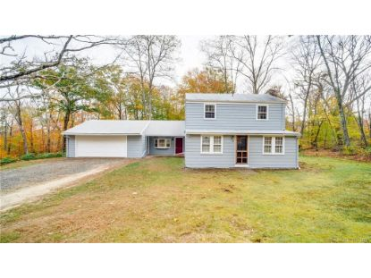 64 Green Road East Hampton, CT MLS# 170350095