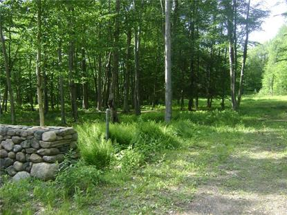 68 Nettleton Hollow Road Bethlehem, CT MLS# L10229708