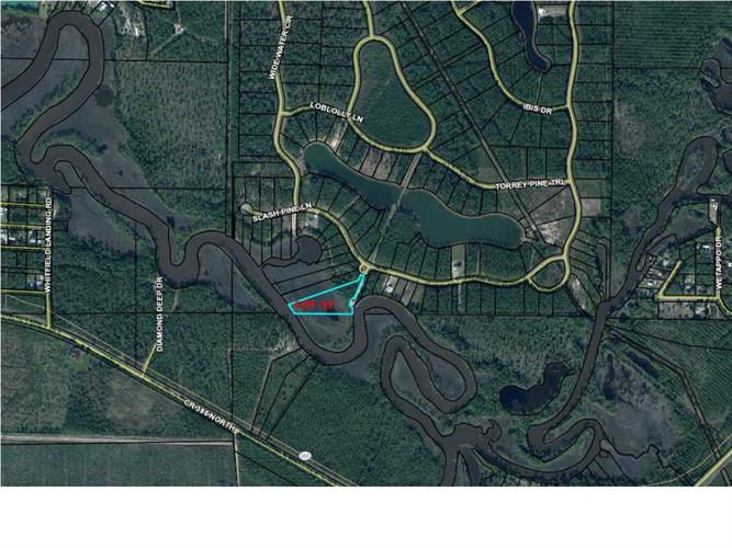 42 WIDE WATER CIR., Wewahitchka, FL 32465