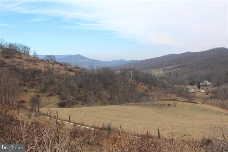 LOWER TIMBER RIDGE ROAD, Onego, WV 26886 - Image 1