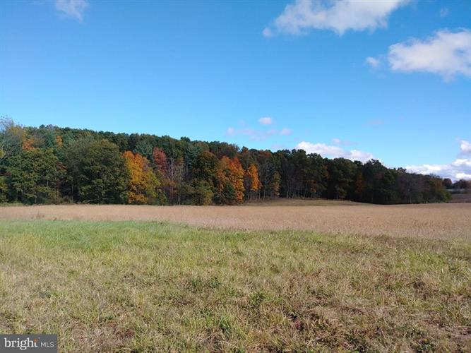 OPEN PLAINS ROAD, Little Orleans, MD 21766 - Image 1