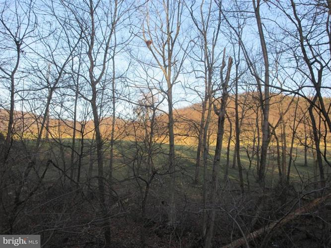 JONES FARM ROAD, Bentonville, VA 22610 - Image 1