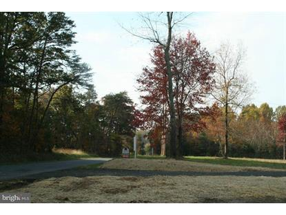 REPTON MILL ROAD Aroda, VA MLS# 1000075905