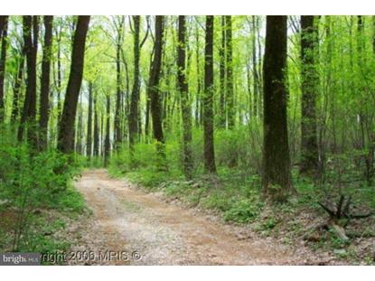 0 BLUERIDGE MOUNTAIN ROAD Paris, VA MLS# 1000084601