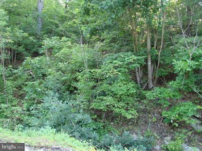DOVEL HOLLOW RD.  Stanley, VA MLS# 1000137703