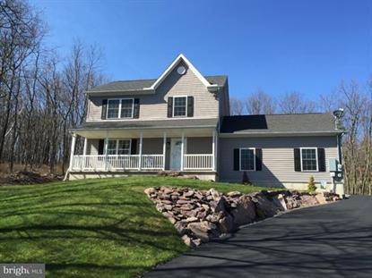 21 ARAPAHOE ROAD, Albrightsville, PA