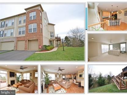 23429 SPICE BUSH TERRACE, Ashburn, VA