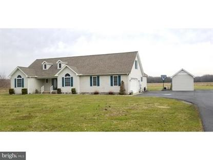 13995 MILE STRETCH ROAD, Greenwood, DE