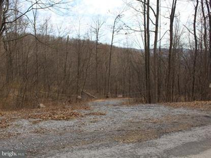 PINE RIDGE ROAD James Creek, PA MLS# 1000411916