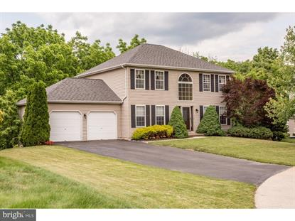 220 RED MAPLE COURT, Chalfont, PA