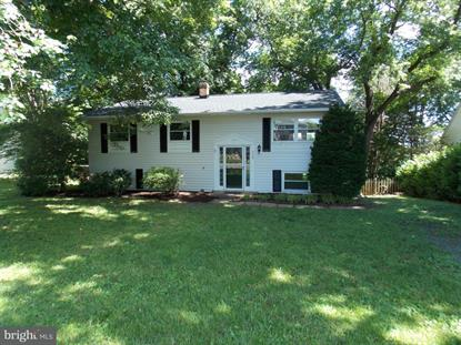 502 STONEWALL AVENUE, Middleburg, VA