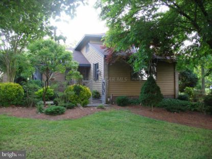 415 SHORE LINE LANE Pocomoke City, MD MLS# 1001873556