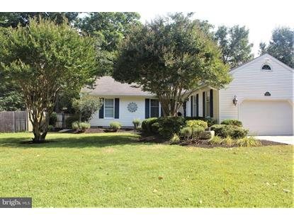 29214 PIN OAK WAY Easton, MD MLS# 1002004534