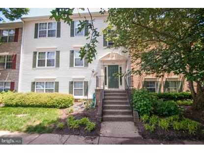 7742 NEW PROVIDENCE DRIVE Falls Church, VA MLS# 1003477074