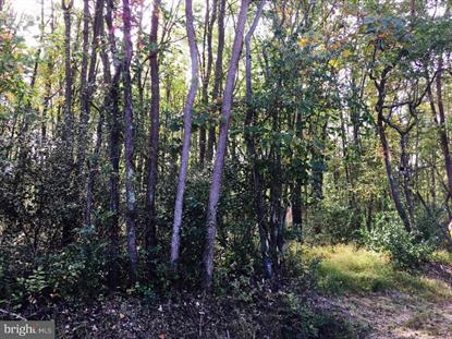 Lot 0 TOLLGATE ROAD Pipersville, PA MLS# 1009913432