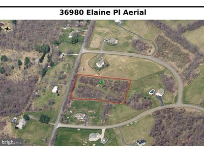 36980 ELAINE PLACE Purcellville, VA MLS# 1009999074