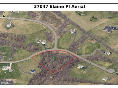 37047 ELAINE PLACE Purcellville, VA MLS# 1009999270