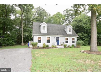 102 DEER RUN  Dagsboro, DE MLS# DESU144908