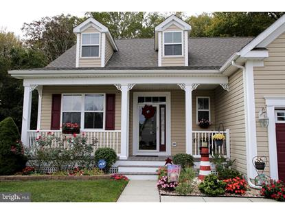 417 TUNBRIDGE COURT Millsboro, DE MLS# DESU149760