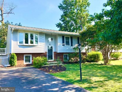 423 SALISBURY ROAD Edgewater, MD MLS# MDAA440380