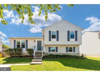 1205 SEDGE COURT Pasadena, MD MLS# MDAA445776