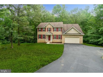 16460 PEAK RUN PLACE Hughesville, MD MLS# MDCH215718