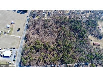 20 AC W S GREENSBORO RT 313  Greensboro, MD MLS# MDCM122836