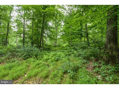 BROWNS QUARRY RD LOT 3  Sabillasville, MD MLS# MDFR261270