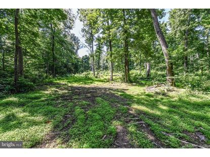 HORNETS NEST ROAD Emmitsburg, MD MLS# MDFR262392