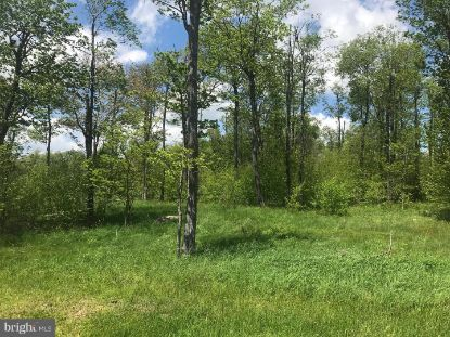 Lot 31 NORTH CAMP  Mc Henry, MD MLS# MDGA130518